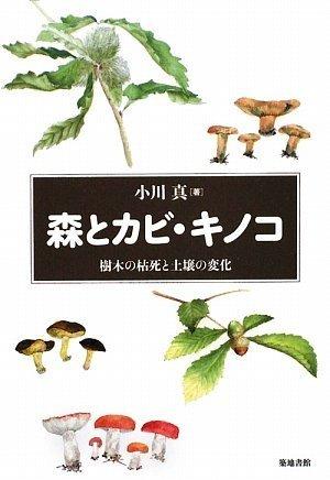 森とカビ・キノコ 樹木の枯死と土壌の変化