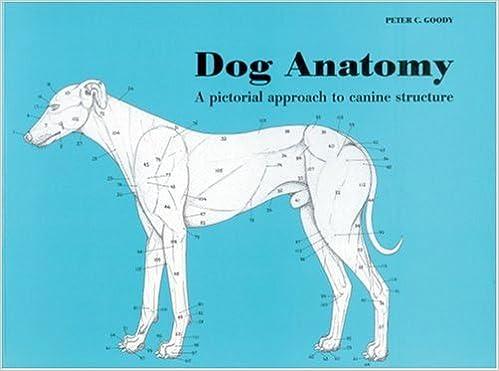 DOG ANATOMY A COLORING ATLAS EPUB DOWNLOAD