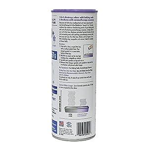 Petkin Cat Litter Deodorizer Lavender 2 in 1, 567g