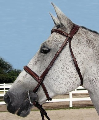 Henri de Rivel Pro Mono Crown Padded Bridle