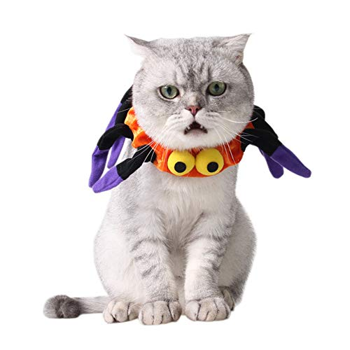 Orgrimmar Halloween Spider Collar for Cat Halloween Decorative Dog Collar]()