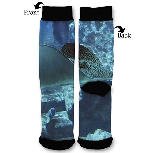 - Fashion Travel Breathable Socks Stingray Rays Underwater Men & Women Running Casual Socks