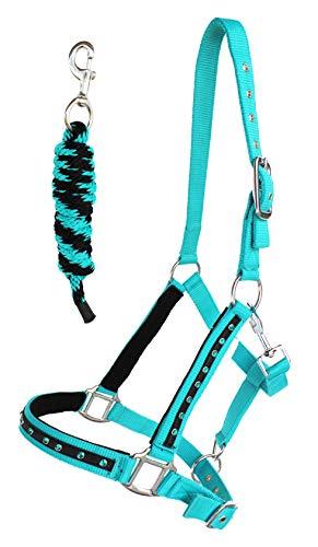 PRORIDER Nylon Horse Halter Lead Rope Noseband Tack Teal Average Size 606122