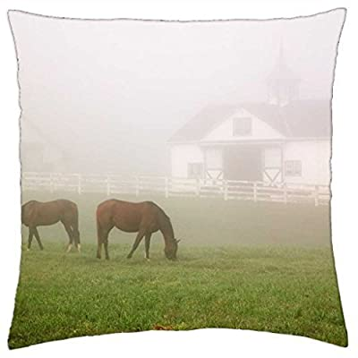 Manchester Horse Farm Lexington Kentucky - Throw Pillow Cover Case (18