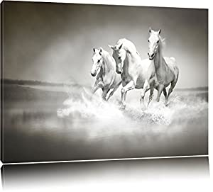 white horses running in the water canvas xxl huge. Black Bedroom Furniture Sets. Home Design Ideas
