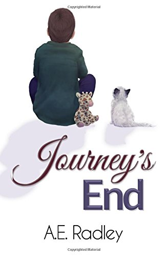 Journeys End Flight 3 Radley product image