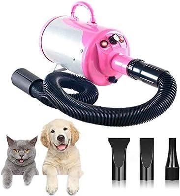 XKPET Secador Profesional para Pelo Perros Gatos Animales 2400W Temperatura Velocidad Ajustable Estándar con 4 boquillas: Amazon.es: Productos para mascotas