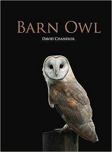 Barn Owl Amazon Co Uk David Chandler 9781847737687 Books