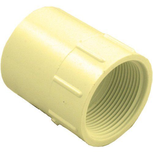 Plumber's Choice 97278 FIP Adapter 3/4-Inch CPVC Fitting with Schedule 40, S by FIP (5-Pack) ()