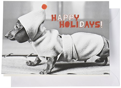 Nouvelles Images Holiday Boxed Note Card Set, Dachshund in Coat (XDB 381)