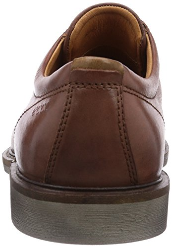 Derby Marrone Basse mahogany Walnut Uomo Scarpe 59129 ECCO Findlay Stringate PqaAA1