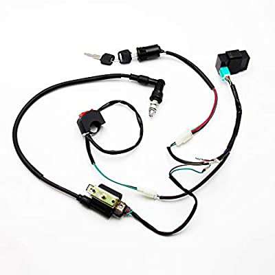 Full Wiring Harness Loom (DHSMWH026): Automotive