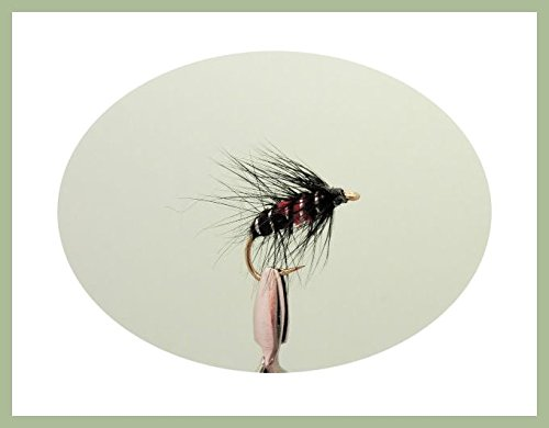 For Fly Fishing 18 Pack Bumble /& Bibio Wet Fly Mixed sizes Wet trout Flies