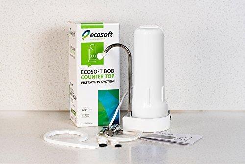 Ecosoft FMV1BOBWEXP