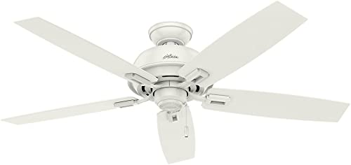 Hunter Donegan Indoor / Outdoor Ceiling Fan