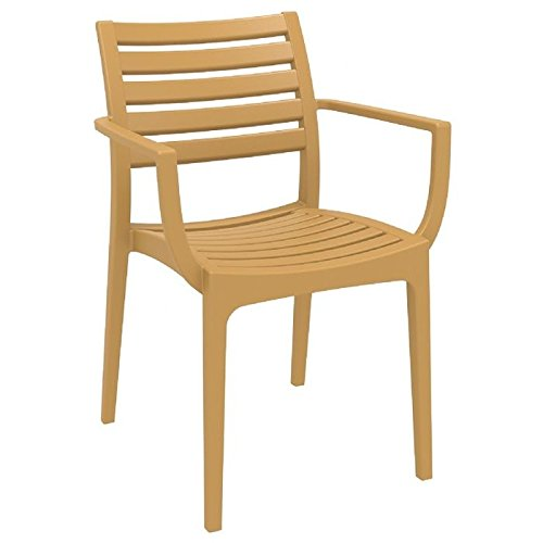 Artemis Outdoor Dining Arm Chair (Set of 4) - Teak Brown