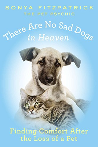 There Are No Sad Dogs in Heaven: Finding Comfort