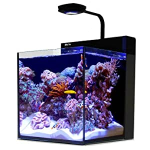 Red Sea Max Nano Aquarium