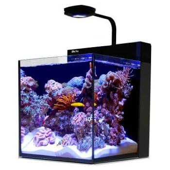 Amazon Com Red Sea Max Nano Aquarium Pet Supplies