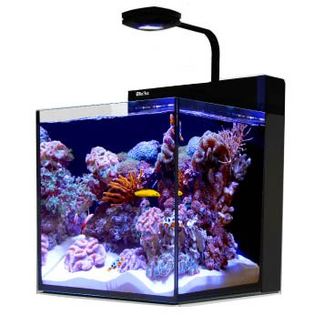Red Sea Filtration - Red Sea Max Nano Aquarium