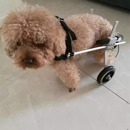 Fanfan Ciclomotor del Animal Doméstico Silla De Ruedas para Perros Silla De Ruedas Puede Ayudar Mascotas Discapacitados Ejecutar, S: Amazon.es: Productos ...