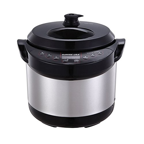 Gowise USA Electric Stainless steel Pressure