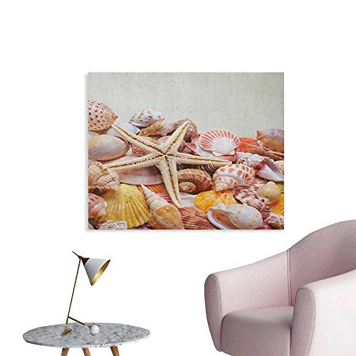 (Anzhutwelve Seashells Home Decor Wall Pile of Seashells Nature Collection Beach Theme Sea Starfish Spiral Cool Poster Coconut Cream Orange W36 xL32)