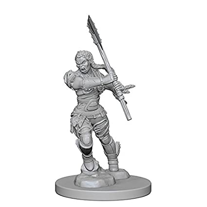 Pathfinder: Deep Cuts Unpainted Miniatures: Half-Orc Female Barbarian