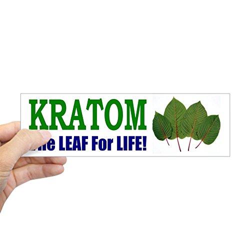 CafePress Bumper Sticker - Kratom, The Leaf for Life 10