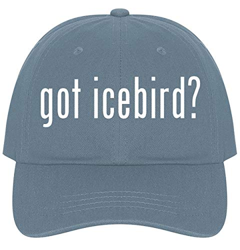 The Town Butler got Icebird? - A Nice Comfortable Adjustable Dad Hat Cap, Light Blue