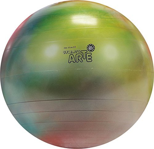 Gymnic Arte Plus Burst-Resistant Exercise Ball (65 cm) by Gymnic