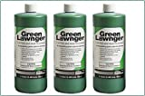 Green Lawnger Turf Paint and Divot Mix Colorant, 1 Gallon
