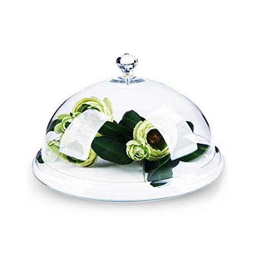 Highly Transparent Acrylic Food Cover Fresh Food Cover Snack Display Cover Food Domes Cake Cover (26cm(10inch)) Pinsjar