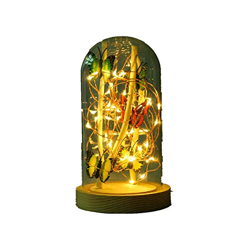 Starry Night light Snow Globe Glass Dome Accent desk Lamp - Bell Jar, Cloche, tree Branch, Butterfly, The table lamp dimension 4.5 x 4.5 x 8.27 inches (Warm White)