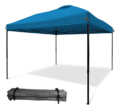 10'x10' Pop UP Canopy Tent Instant Shelter Straight Wall with Wheeled Carry Bag
