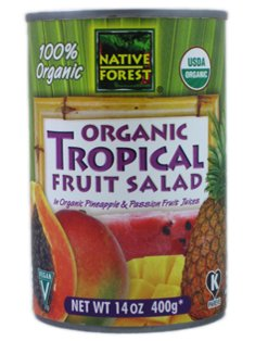 Native Forest: Organic Tropical Fruit Salad (1 x 14 OZ)