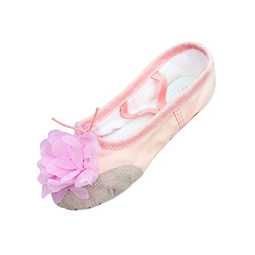 Zhhlaixing Adults Childs Soft Canvas Danzar Flat Shoes Profesional Ballet Yoga Gymnastics Training Shoes Nude