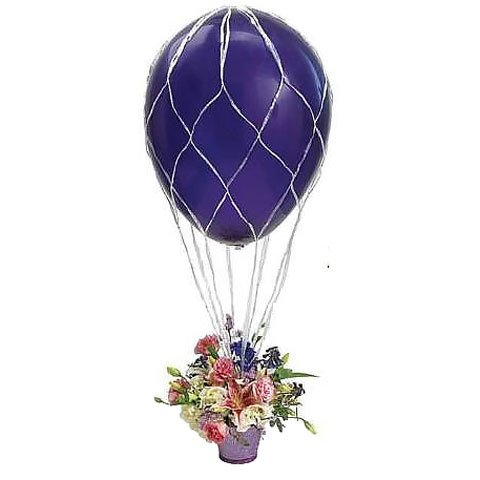 Hot Air Balloon Net (Nets For 16 Balloons (1 per package))