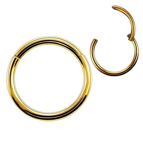 (Formissky-Sisa 10mm Hinged Nose Ring Hoop Earrings Gold Tone 18G Daith Tragus Lip Snug Orbital Piercing Jewelry)