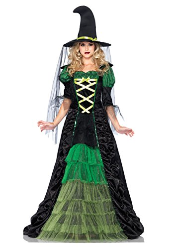Witch Halloween Costumes For Women (Leg Avenue Women's 2 Piece Storybook Witch Costume, Black/Green, Medium/Large)
