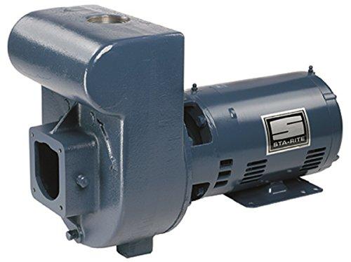 Pentair DMH3171 3HP 230/460V D-Series Medium Head Sta-Rite Pump (Pentair Medium Head Pump)