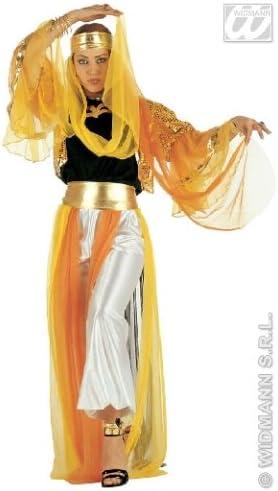 Disfraz bailarina árabe Odalisca: Amazon.es: Ropa y accesorios