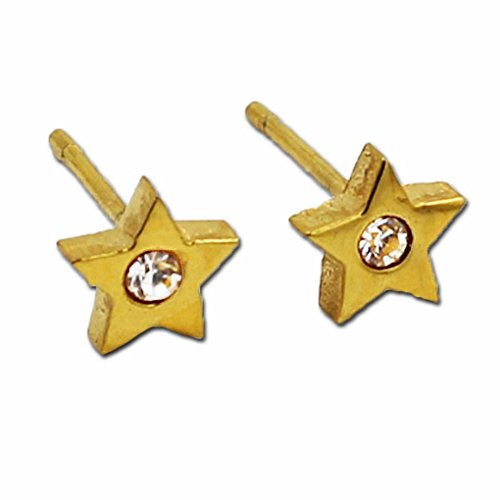 fonk: JewelryStianless Steel Stud Earrings5 Star Style10 With A White Packing Card