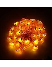 EUNEWR Pompoen Lichtsnoer voor Halloween, 6 m, 40 leds, led-lichtsnoer, decoratie met USB, voor feestjes, tuin, festival, herfstdecoratie