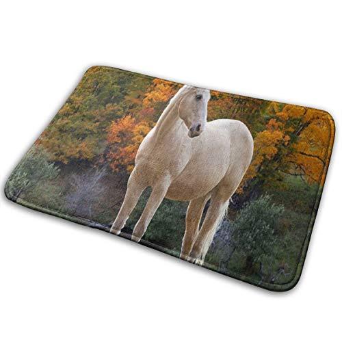 YETSH Doormat White Horse in Autumn Non Slip Water Absorption 23.6 x 15.7 Inch Floor Mats for Home/Kitchen/Doorway/Bathroom ()