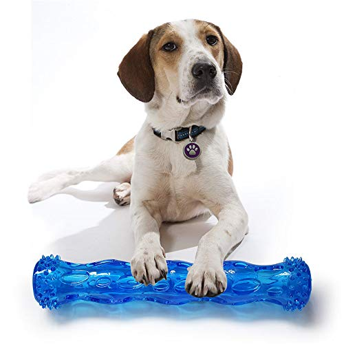 Longay Dog Molar Stick Brushing Stick Dogs Effective Toothbrush Doggy Brush Stick - Mat Squeaker Squirrel