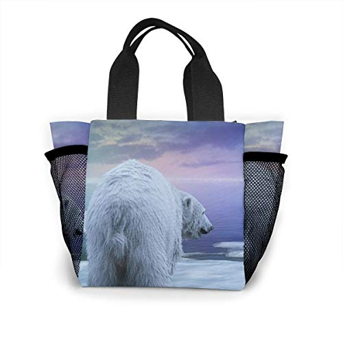 (Insulated Lunch Bag For Women Northern Lights Polar Bears And Penguins, Cooler Lunch Storage For Beach)