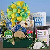 Playful Paws Cat Gift Basket : Basket Theme CONGRATULATIONS : Bow Style Elegant Hand Tied Bow