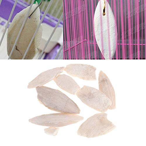 Cuttlefish Bone - 1bag Cuttlebone Cuttlefish Sepia Bone Cuttle Fish Bird Food Calcium Pickstone Pet - Filled Carrier Drinker Food Bird Plush Taxi Fountain Munyu Hugger Holders Petite Bean