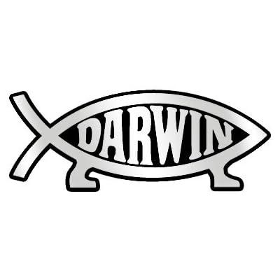"Darwin Fish Plastic Auto Emblem - [Silver][5.25"" x 2""]: Automotive"